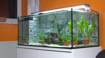 RTV silicone sealants can be used to make sure your aquarium doesn't leak.