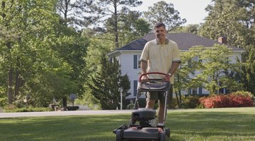 Father and daughter with a lawnmower