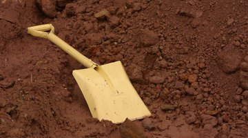 Use a shovel to remove standing water and dig into the muddy soil.