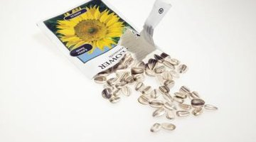 Cereal toppings such as sunflower seeds are sources of iron.