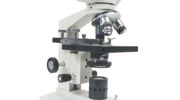 ¿Cuál es la resolución de un microscopio?