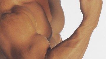 Bultos y venas en el bíceps