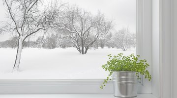 Install storm windows.