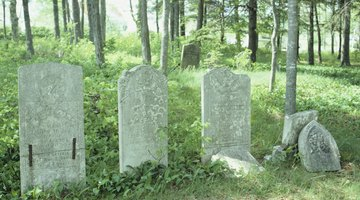 Dead pets can be buried in a pet cemetary