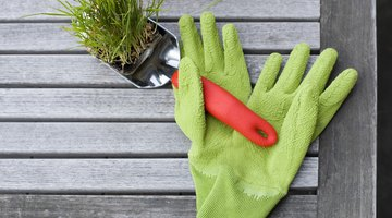 Wear gloves or rub your hands in the dirt to keep your human scent off the trap.