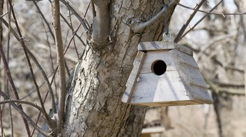 A birdhouse hanging in a tree.