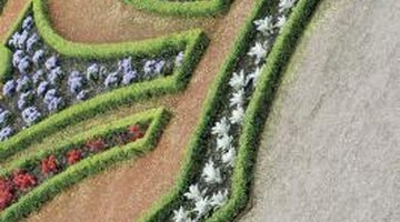 Formal gardens often have their flower beds laid out in unique designs.