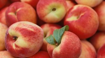 Ripeness is determined by uniform colour and aroma.