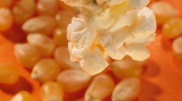 Dolor de estómago después de comer rosetas de maíz