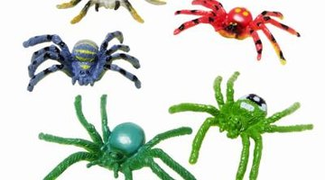 Not only fake spiders come in bright, neon colours.