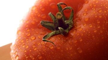 ¿Por qué los tomates causan malestar estomacal?