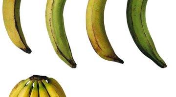Natural Sources of Vitamin B6   Healthfully
