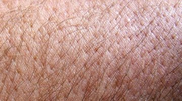 Cortisol Levels & Itchy Skin