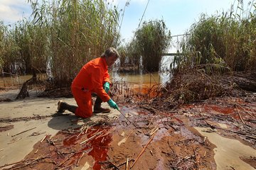 Biologist at the site of an oil spill