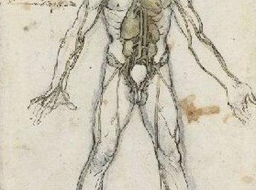 Angiogenesis Definition