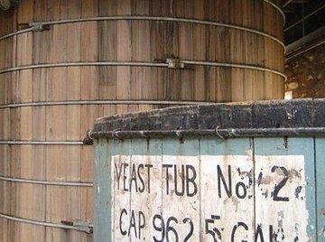 Fermenting yeast