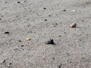 Unlike copper sulfate, sand does not dissolve in water.