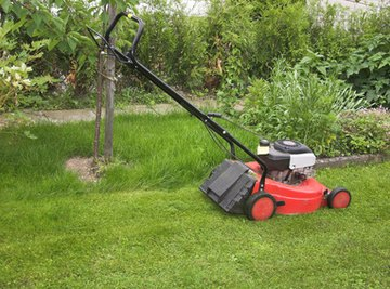 Garden clippings are a source of organic matter.
