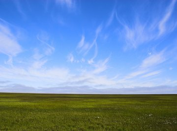 What Is the Landscape of the Tundra?