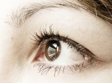 Brown is the most common eye color worldwide.