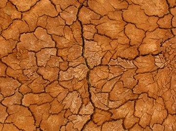 Arizona's soil has a high clay content.