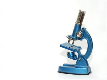 A compound microscope is one of the more well-known types.