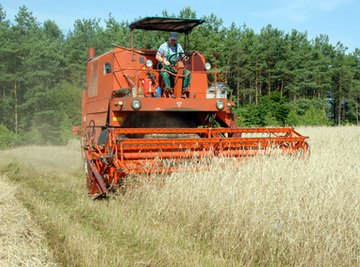 Use customizable grate and concave attachments on the Case IH 2588 combine to minimize wheat grain damage.