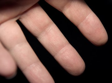 The fingers have high sensitivity to tactile stimulation.