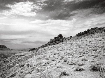 Some camaras can take infrared pictures.