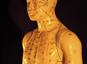 The lymphatic system is important to your body's everyday functioning.
