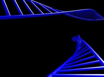 Use popsicle sticks to make DNA.