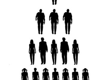 A sample of the population is used for statistical analysis.