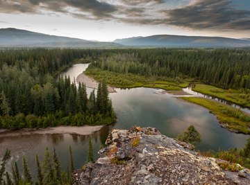 An overhead view of the taiga wilderness.