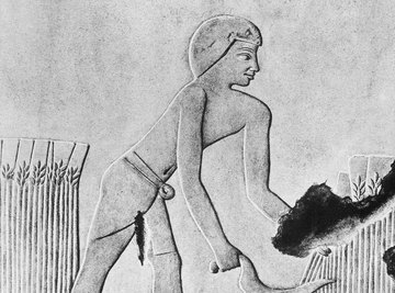 The harvest meant life or death for the great civilizations in the Nile River Valley.