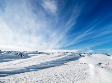 A wide shot of a snowy landscape.
