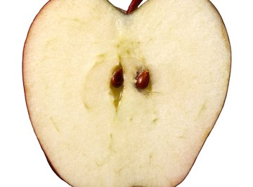Oxidation is the reason why apple slices   turn brown.