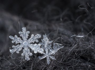 These snowflakes show dendritic, or branching, form.