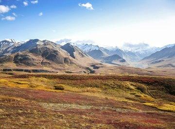 Tundra landsape