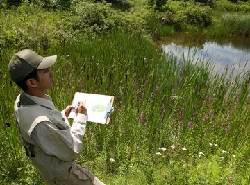 The science of ecology involves studying the relationships among living and nonliving things.
