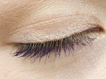 Eyebrow shape and eyelash length are genetic characteristics.
