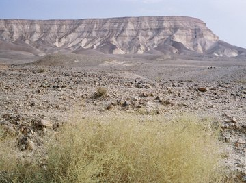 Plateaus are flat-topped ridges of land.