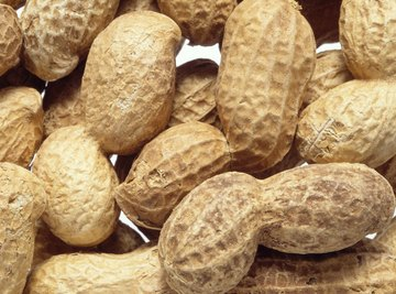 Peanuts were not widely cultivated in the American South until Carver promoted their many possible uses.