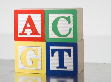 Nucleotides, the building blocks of DNA, are represented by four single letters.