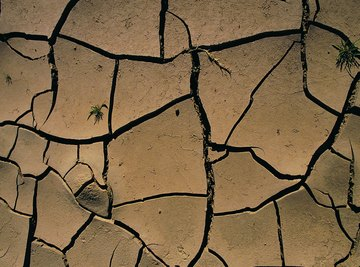 Without water, clay soil shrinks, hardens and cracks.