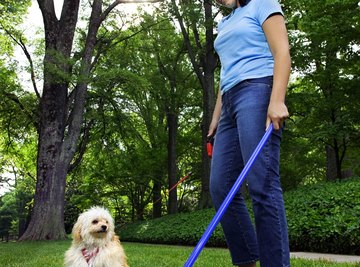 Leaving your dog's waste on the lawn isn't environmentally friendly.