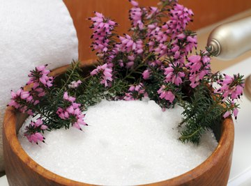 Epsom Salts and the Septic Field