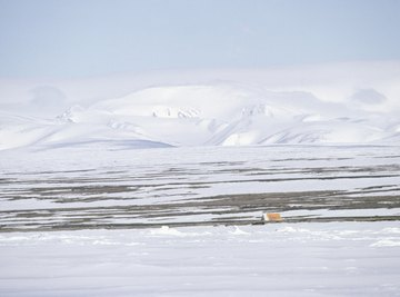 A tent in the distance on a tundra in Canada.