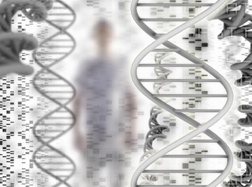 Heredity is genetic inheritance from your parents.