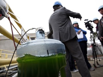 An engineer speaks into a video camera in front of a jug of micro algae solution at a biofuel facility.