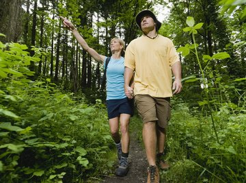 A couple walking together on a woodland trail.